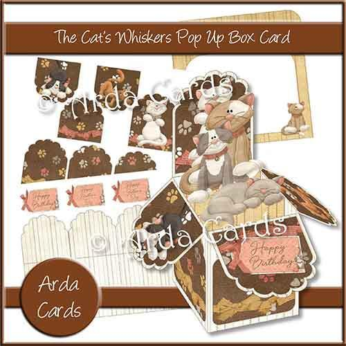 Cat's Whiskers Pop Up Box Card